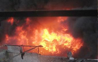نفوق 4 رءوس ماشية فى حريق حظيرة ماشية بالمنوفية