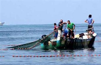 """صيادو """"مريوط"""" بالإسكندرية يتقدمون بشكوى جماعية للثروة السمكية بعد غزو """"البوص"""" للبحيرة"""