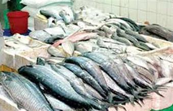 ضبط طن أسماك مجمدة منتهية الصلاحية في حملة على الأسواق بالإسكندرية