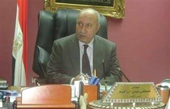 """جهاز مدينة الشيخ زايد يشن حملة لإزالة التعديات ورفع الإشغالات بـ""""المولات التجارية"""""""