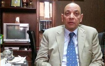 شعبة السيراميك تطالب بمراجعة أسعار الغاز للوصول بالصادرات إلى 250 مليون دولار