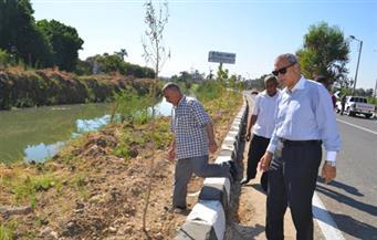 """بالصور.. محافظ قنا يحيل رئيس قرية """"دندرة"""" للتحقيق بسبب إهماله في ري الأشجار"""