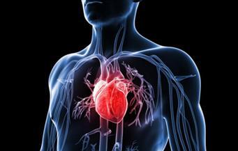 إجراء تجارب على استخدام أشعة الضوء في علاج رجفان القلب