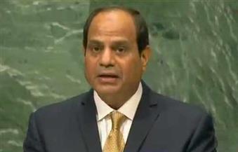 هريدى: كلمة السيسى بالأمم المتحدة تعكس قوة وتناغم مؤسسات الدولة