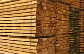 انخفاض واردات مصر من الأخشاب 19% والأثاث 5% خلال 2020
