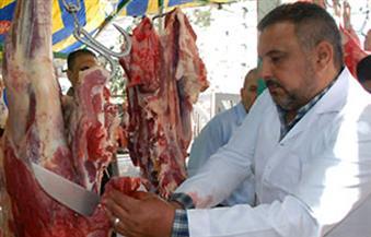 نائبان بالجيزة يوفران شوادر سلع وخضراوات ولحوم لمواجهة جشع التجار