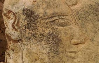 """بالصور.. """"الآثار"""": اكتشاف أدلة تزيد احتمالية وجود معبد لرمسيس الثاني في عين شمس"""