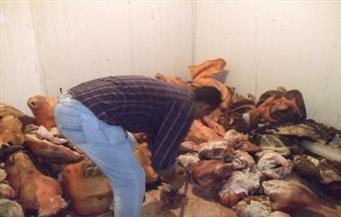 الزراعة: ضبط 18 طنًا و729 ألف كيلو من اللحوم غير الصالحة للاستخدام الآدمي بالجيزة