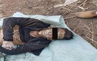 العثور على جثة سائق توك توك مقتولا على حافة ترعة بالمنوفية
