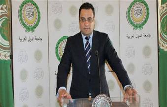 السفير عفيفي: الجامعة العربية مهتمة بليبيا ولاجديد حول تجميد عضوية سوريا