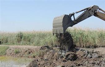 """""""الزراعة"""": حملة موسعة لإزالة التعديات ببحيرة البرلس الأسبوع المقبل"""