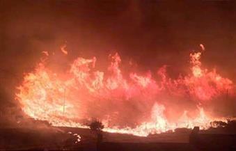 طائر يتسبب في نشوب حريق هائل قرب كانبيرا في أستراليا