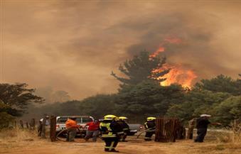 نزوح نحو 3000 شخص من منازلهم في تشيلي بسبب حرائق الغابات