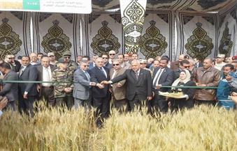 """نور الدين: حصاد القمح بالتبريد """"اشتغالة"""".. ورئيس """"القومي للمياه"""" يطرح نفسه كوزير للزراعة والري"""