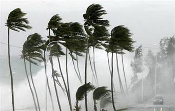 الرياح تقتل شخصين وتقطع الكهرباء في أونتاريو جنوب كندا