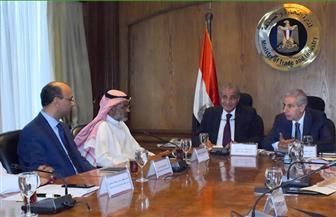 وزيرا التجارة والتموين يبحثان تعزيز استثمارات مجموعة صافولا السعودية بالسوق المصرية