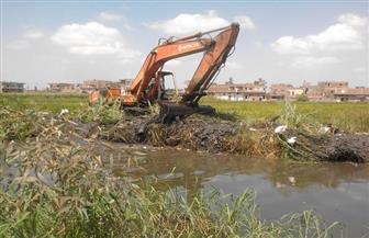 حملات لتطهير المجاري المائية وندوات إرشادية بأسيوط | صور
