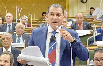 باشات: الرئيس السيسي نجح في تسوية التوتر بين مصر والسودان