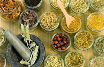 النباتات الطبية والعطرية تخترق 40 سوقًا دوليًا.. ومصر بالمركز الـ11 عالميًا