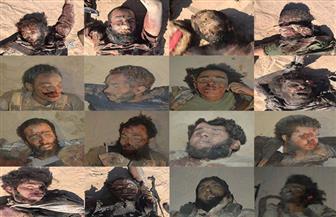 """المتحدث العسكري ينشر صورًا جديدة للعناصر الإرهابية التى تم القضاء عليها أثناء محاولة استهداف """"القواديس"""""""