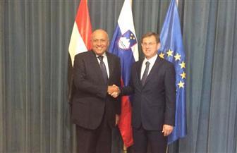 رئيس وزراء سلوفينيا يؤكد في لقاء مع شكري تقدير بلاده لمكانة مصر المؤثرة في الشرق الأوسط | صور