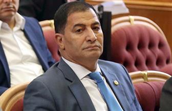 برلماني: حركة حماس مطالبة برد الجميل لمصر بغلق قطاع غزة أمام الإرهابيين