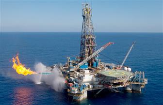 """رئيس غرفة البترول: إنتاج حقل """"ظهر"""" مهم لاقتصاد مصر.. وتحقيق الاكتفاء الذاتي حديث سابق لأوانه"""