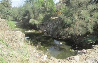 """رئيس """"بسيون"""": رفع مخلفات بحر الساحل والتنسيق مع الري لحل أزمة ندرة المياه   صور"""