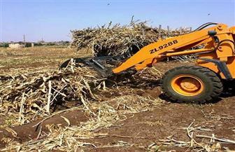 الحبس والغرامة لحارقي المخلفات الزراعية بسوهاج | صور