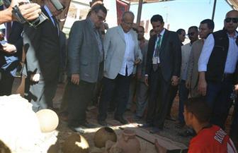 وزير التنمية المحلية: لا تقدم بدون ثقافة وفن وإبداع.. والدولة تريد القضاء على الفقر والأمية | صور