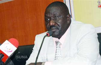 وزير الثقافة السوداني: الرئيسان السيسي والبشير يقدران أهمية الثقافة في تعزيز العلاقات الثنائية