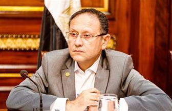 """نائب """"مستقبل وطن"""" بقنا يناشد وزير الرياضة بصرف الدعم المالي لمركز شباب السليمات"""