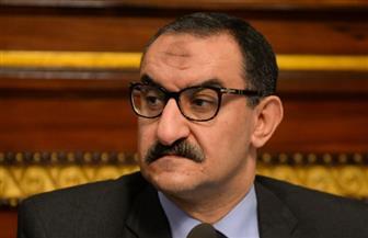 الغول: خطة واضحة للمشاركة فى جميع المنتديات والمؤتمرات الدولية للدفاع عن مصر