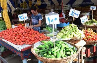 أسعار الخضراوات والفاكهة في المحافظات.. البصل بـ 8 جنيهات.. البامية بـ 30.. والمانجو بـ 15
