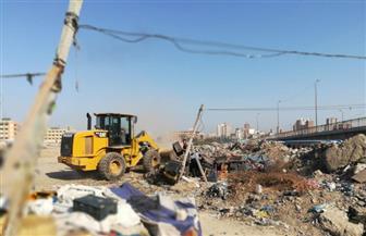 حملة لإزالة إشغالات الباعة الجائلين من شوارع الإسكندرية| صور