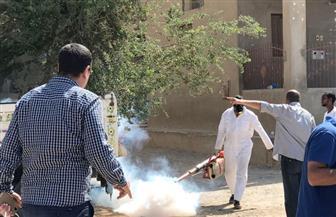 """الصحة تشن حملة وقائية على مدينة القصير للقضاء على البعوضة الناقلة لحمى """"الضنك"""" / صور"""