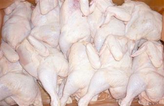"""رئيس شعبة الدواجن: ثلث استهلاك المصريين من الدجاج """"فراخ مجمدة"""""""