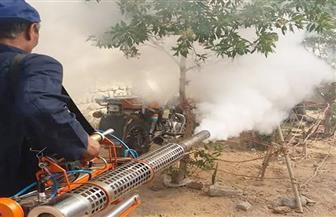 """استمرار أعمال مكافحة الحشرات الضارة بسفاجا لحصار """"حمى الدنج""""   صور"""