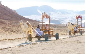شباب بتحب مصر تطلق معسكرًا بيئيًا كشفيًا بمحمية وادي الجمال