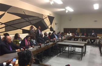 قبيل انطلاق انتخابات اليونسكو.. وزيرا الخارجية والتعليم العالي يجتمعان بالمجموعة الإفريقية لدعم مشيرة خطاب