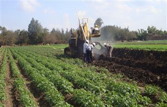 مشروعات لهيئة الصرف بالوجهين القبلي والبحري تزيد إنتاجية المحاصيل 25% | صور