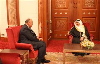 وزير الخارجية يلتقي الملك حمد بن عيسى ويؤكد دعم مصر الكامل لأمن واستقرار البحرين