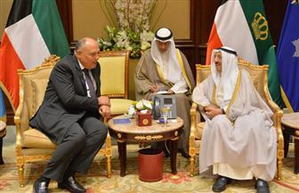 شكري يبحث مع أمير الكويت ووزير خارجيتها سبل تعزيز وحدة الصف العربي | صور