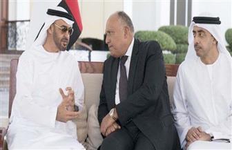 خلال لقائه ولي عهد أبو ظبي.. وزير الخارجية يؤكد سياسة مصر الراسخة للدفاع عن الأمن القومي العربي