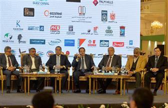أبو العينين: مصر تسعى لخلق سوق استثماري منافس للعالمي
