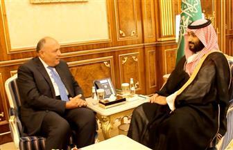 شكري يلتقي ولي عهد السعودية ويؤكد أن أمن دول الخليج جزء لا يتجزأ من الأمن القومي المصري