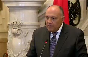 وزير الخارجية: مصر تدرك الدور المهم لممثلي الدول الأعضاء في تشكيل سياسات القارة الإفريقية
