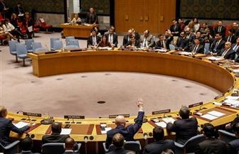 روسيا تستخدم الفيتو في الأمم المتحدة وتعرقل تحقيقا بشأن سوريا