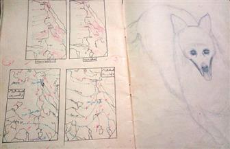 كيف رسم تلاميذ مصر نهر النيل ومنابعه بإفريقيا؟   صور