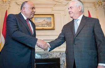 شكري وتيليرسون يؤكدان أهمية الالتزام الكامل باتفاق إعلان المبادئ بين مصر والسودان وإثيوبيا